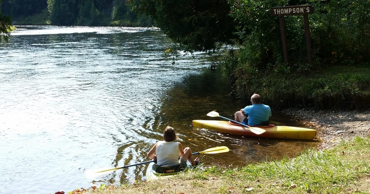 Alcona Dam to Loud Dam: AuSable Kayak Rental