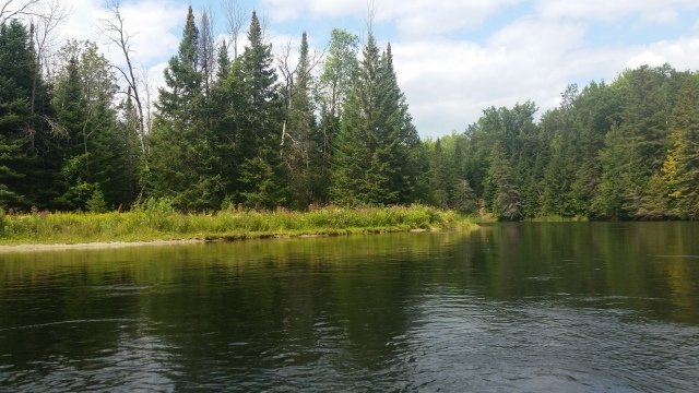 Spectacular Natural Beauty: Au Sable River Canoe Trips